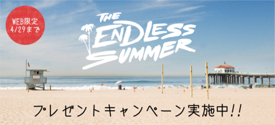 THE ENDLESS SUMMER__